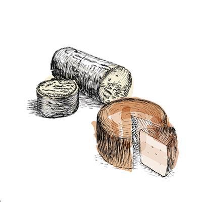 Accords mets & vins - Fromage Chèvre & Brebis